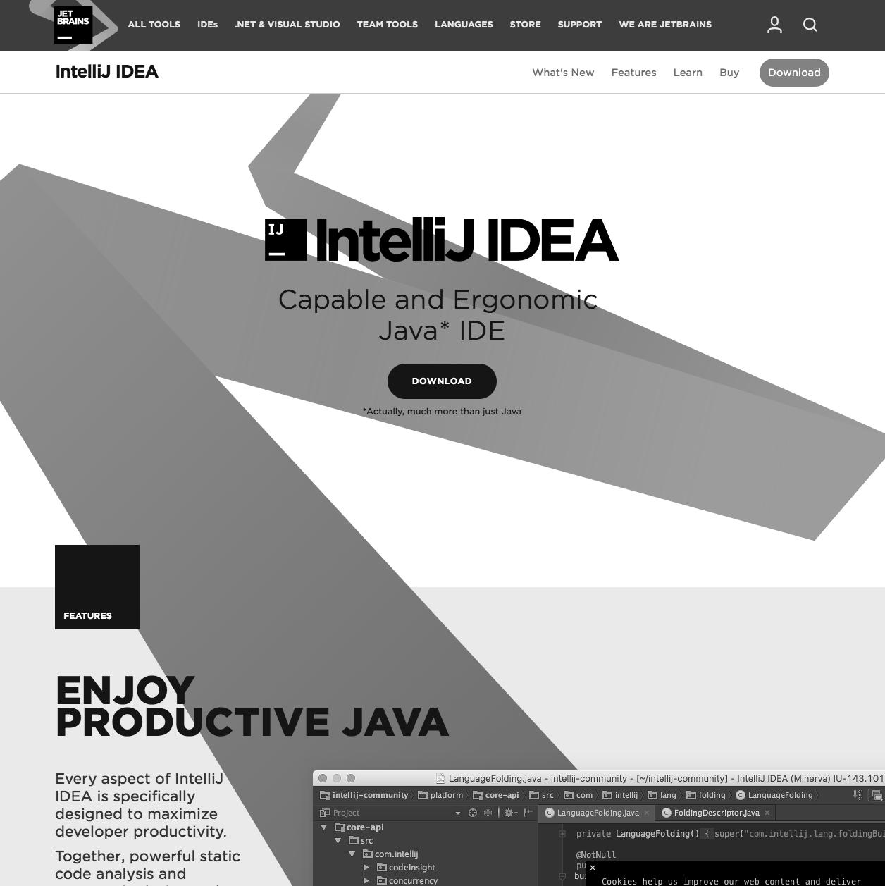 Smashing Theory: Java (programming language)