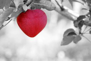 Cinta dan Perasaan Yang Menemaninya