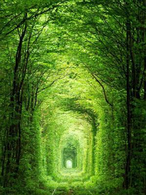 tunnel of love in ukraine,beautiful love tunnel