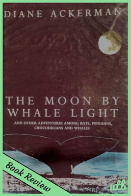 moon-by-whale-light-cover