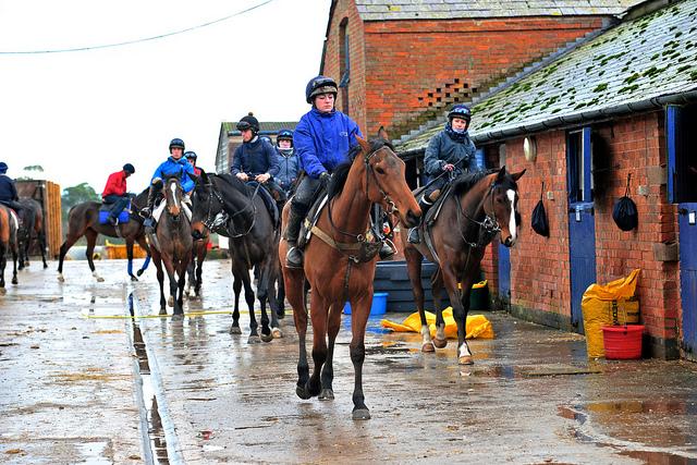 Photo montrant un groupe de chevaux montés, qui semblent s'apprêter à partir à l'entrainement