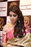 Actress Shriya Saran Stills in Saree at VRK Silks Launches at Himayat Nagar  0004.JPG