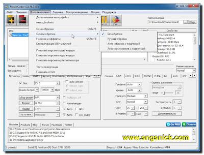 MediaCoder 0.8.46.5865 - Опции обрезки