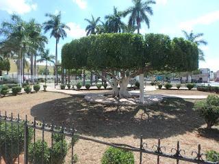 Seyé main square park.