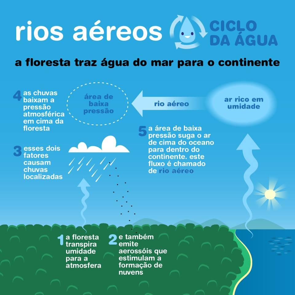 Transições: A bomba biótica e os rios aéreos da Amazônia