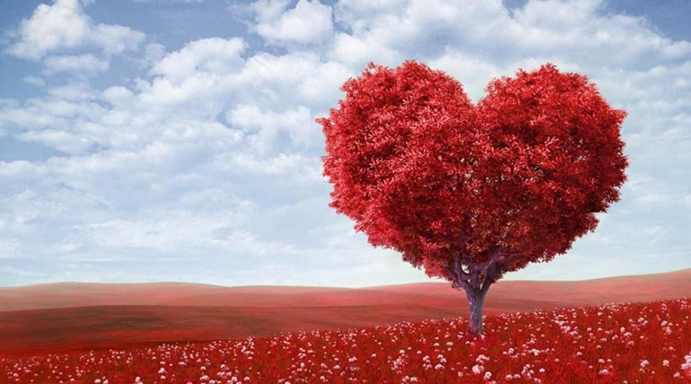 Valentines Day 2017 Week list