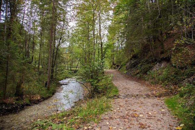 Rundweg Röthelmoos Almen – Weitsee  Wandern Ruhpolding  Wanderung Chiemgau 11