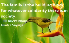 quotes on solidarity