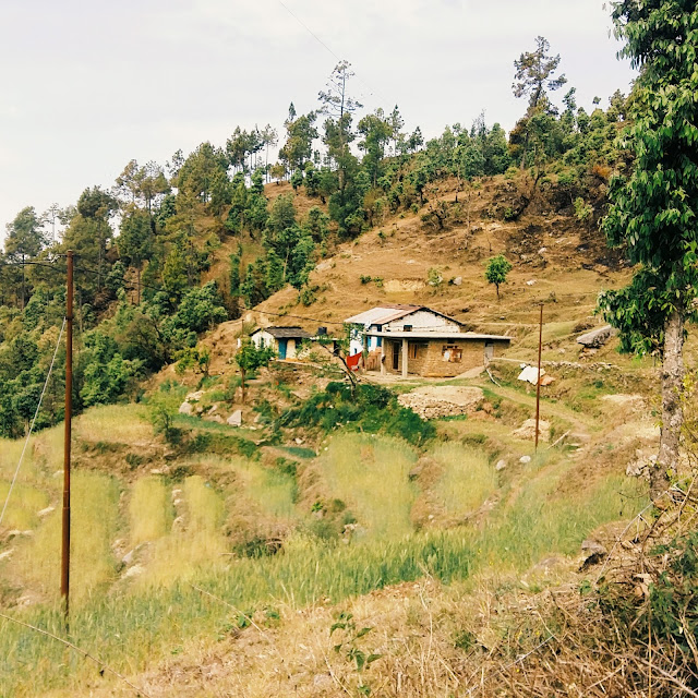 Local houses in Pithoragarh city, Uttarakhand