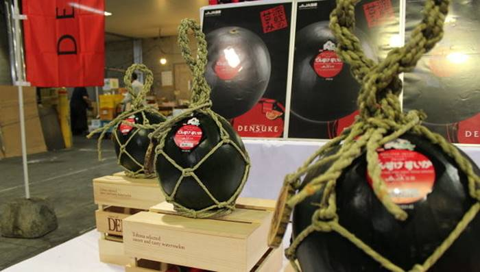 n 2008, one of these rare watermelons was sold at auction in Japan for $ 6,100. This does not seem insane, but precious black watermelons are still cheaper than the royal melons