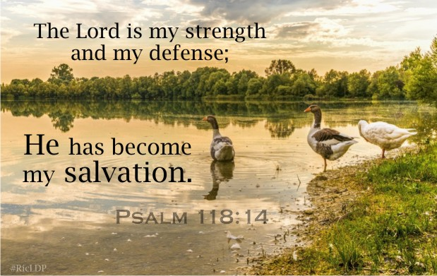 The Lord is my strength and my defense