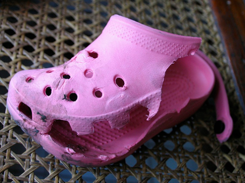 Dangers of Crocs (Slippers)/US News