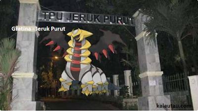 kalautau.com - Pokemon Legendaris Gratina - Jeruk Purut