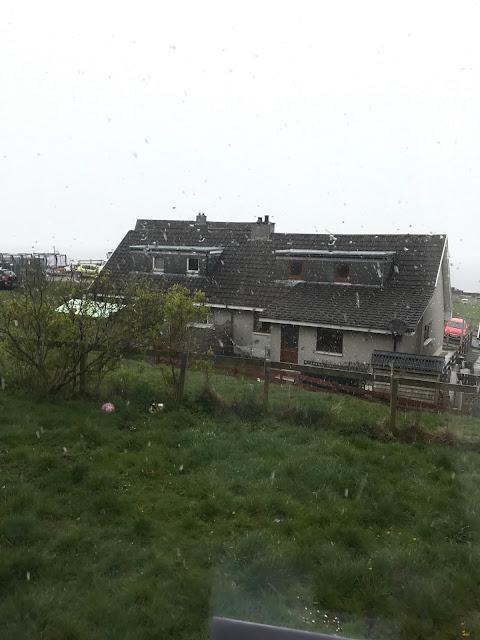 raining photo of garden