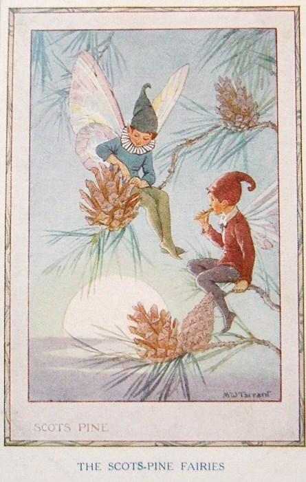 Postcardiva Postcard Blog: MARGARET TARRANT Fairies