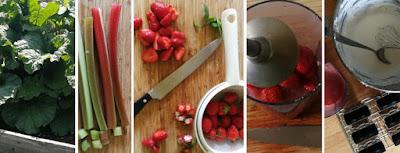 Zubereitung Rhabarber-Erdbeer-Quark-Stieleis