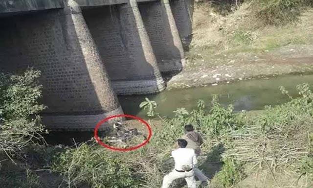 पुल से गिरा युवक, इलाज के दौरान मौत | KOLARAS, SHIVPURI NEWS