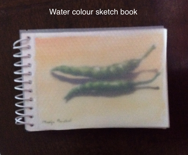 spirally bound water colour sketch book created by Manju Panchal