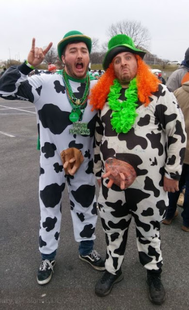 Having an udderly good time at Shamrockfest 2018