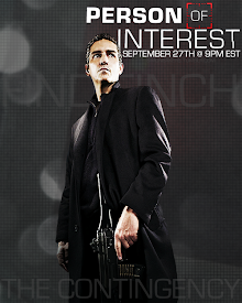 Person of Interest (TV Series 2011)