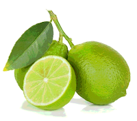 klasifikasi tumbuhan jeruk nipis