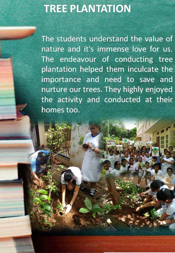 Powerpoint Presentation On Importance Of Tree Plantation