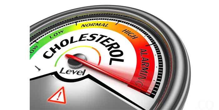 Cara Menurunkan Kolesterol Tinggi Tanpa Obat Obatan