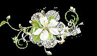 Flor branca png