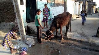 water-crisis-bihar