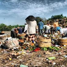 TPA Pakusari Jember: Ketika Tumpukan Sampah Disulap jadi Wisata Edukasi Buatan Keren di Jember!