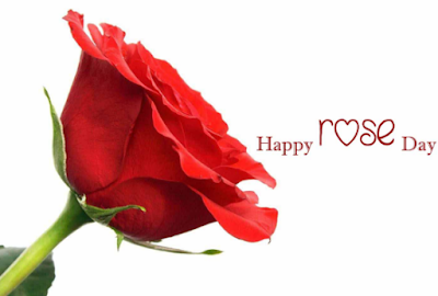 Happy Rose Day Wishes 2017