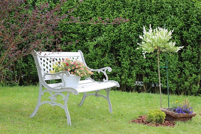Fumigación de jardines: ¿cómo eliminar plaga de topos?