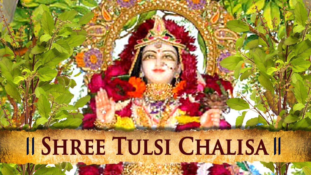 Shree Tulsi Chalisa In Hindi | श्री तुलसी चालीसा | चालीसा संग्रह | Gyansagar ( ज्ञानसागर )