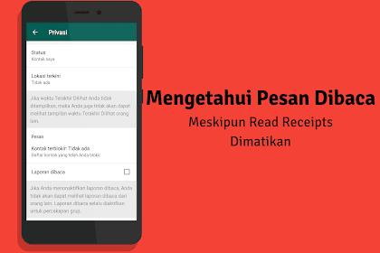 Trik Mengetahui Chat Whatsapp Dibaca Meskipun Centang Biru Dimatikan, Ampuh!