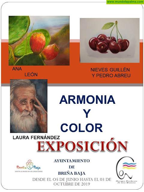 AYTO BREÑA BAJA: Armonía y Color
