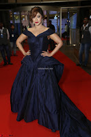 Payal Ghosh aka Harika in Dark Blue Deep Neck Sleeveless Gown at 64th Jio Filmfare Awards South 2017 ~  Exclusive 120.JPG