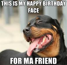 funny birthday memes for friends