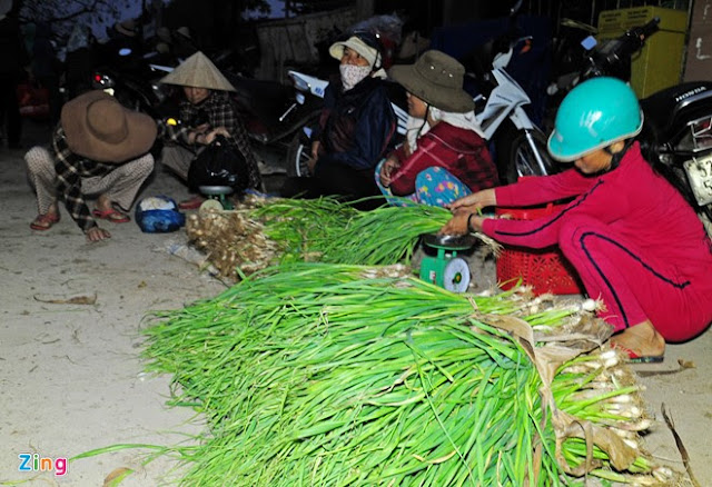 Chợ tỏi 4h sáng trên đảo Lý Sơn - Hình 13