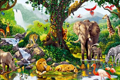 93 Nama Hewan / Binatang dalam Bahasa Arab