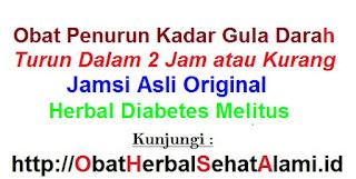 Obat gejala diabetes melitus dan pengobatannya
