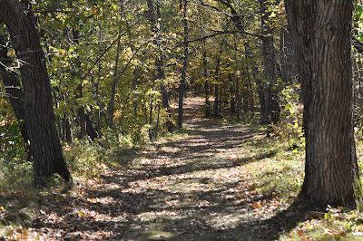 A Walk through the Crow Wing State Park