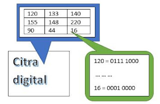 contoh nilai piksel citra digital