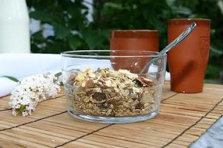 oatmeal obat kolesterol alami