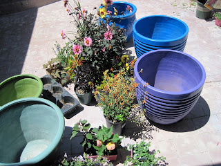 Blue And Purple Were Prevalent In Moroccan Gardens. Weu0027d Bought A Few New  Pots And Spray Painted Some Glazed Ones We Already Had.