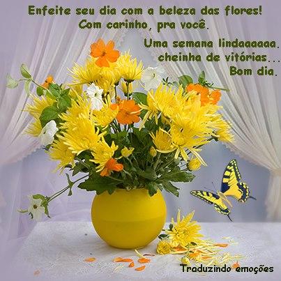 Mensagens Com Flores De Bom Dia Frases E Mensagens Em