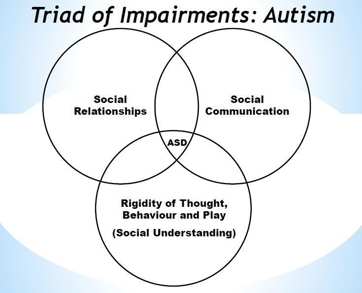 autism spectrum disorder ~ autism treatment in kolkata Environment and Autism \
