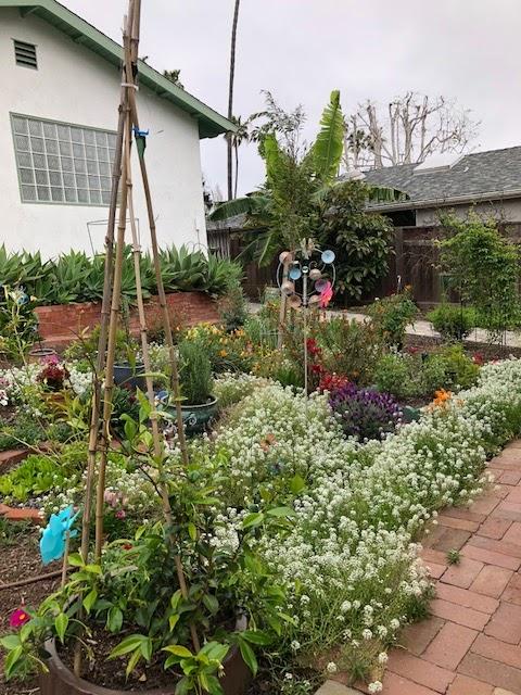 2018 Mar Vista Green Garden Showcase