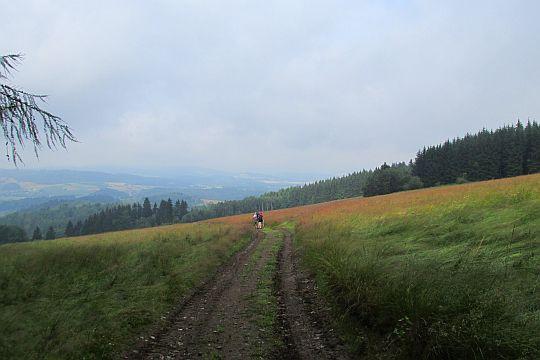 Zejście na Lewińską Przełęcz.