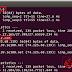 LAB 4 : Menghubungkan Router dan PC GNS3 ke Internet