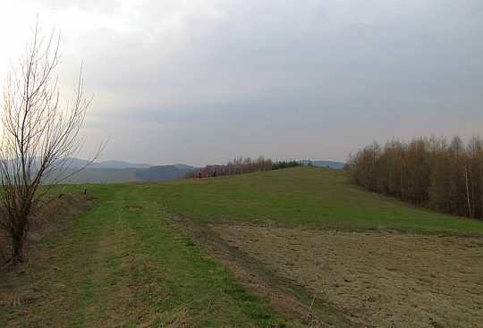 Uroczysko Oborzysko (448 m n.p.m.).